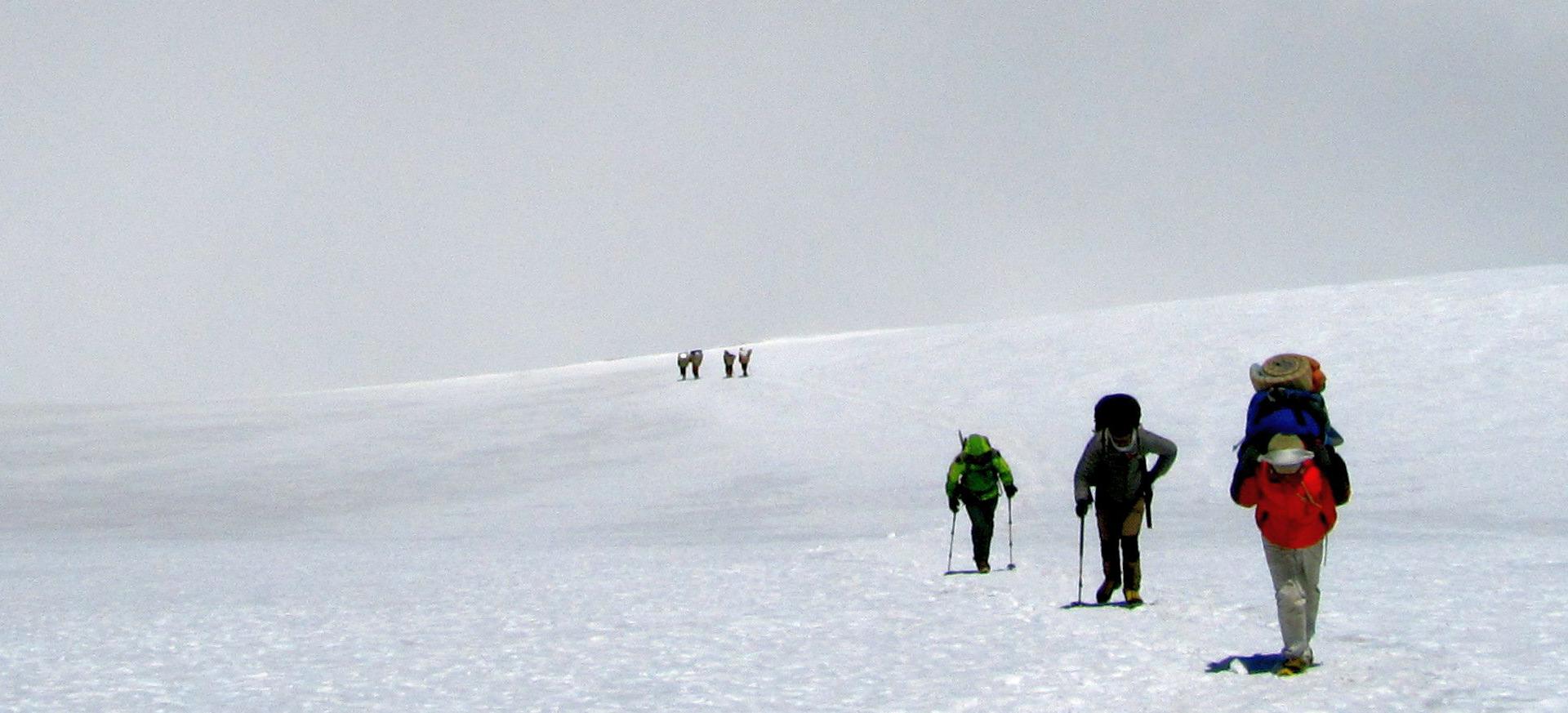 Pharchamo-Peak-Climbing