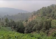 Chisopani Nagarkot Dhulikhel trek
